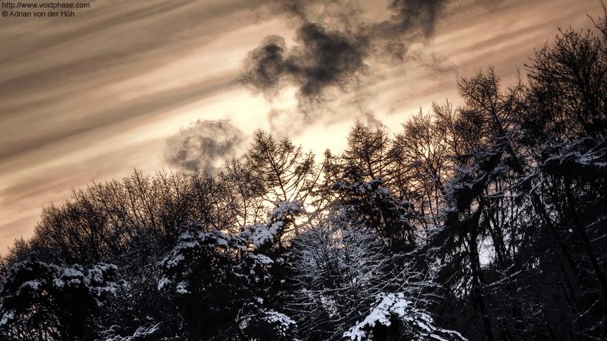 Snowy Treeline at sundown (HDR)
